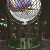创意绿植园艺美陈 大型仿真绿植 商场绿植 场地布置道具