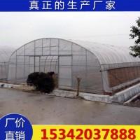 葡萄避雨棚 大棚骨架 新型 蔬菜大棚骨架 镀锌管大棚厂家生产