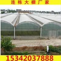 承德连体大棚厂家直销 蔬菜连栋大棚管子厂家定做 连栋温室大棚