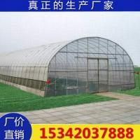 灵芝大棚种植 厂家供应灵芝种植塑料温室大棚骨架专业设计安装