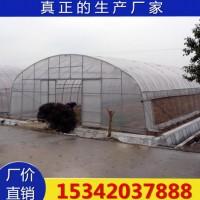 天津厂家生产大棚管 农业大棚骨架 镀锌管蔬菜大棚架子专业设计