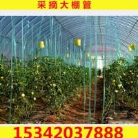厂家供应大棚管 蔬菜大棚架子 镀锌大棚管 大棚配件
