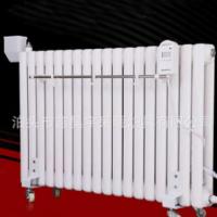 家用钢制暖气片 注水水电暖气 智能温控