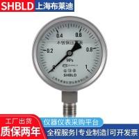 布莱迪压力表一般压力表不锈钢耐震压力表压力表生产厂家